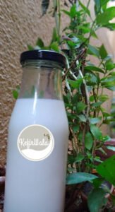 Milk kefir drink in Bangalore